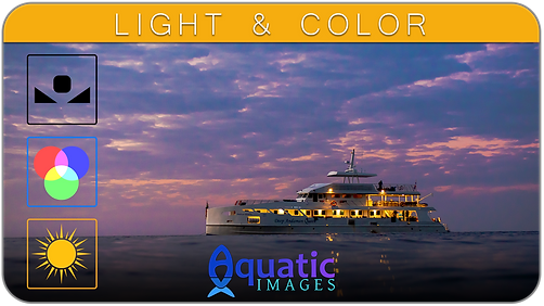 Light & Color Course in Koh Tao - Thailand | Aquatic Images