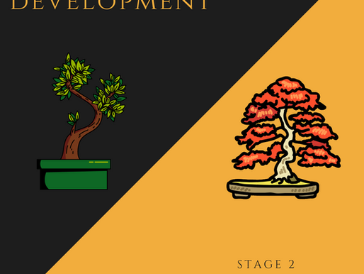 The 2 Stages Of Bonsai
