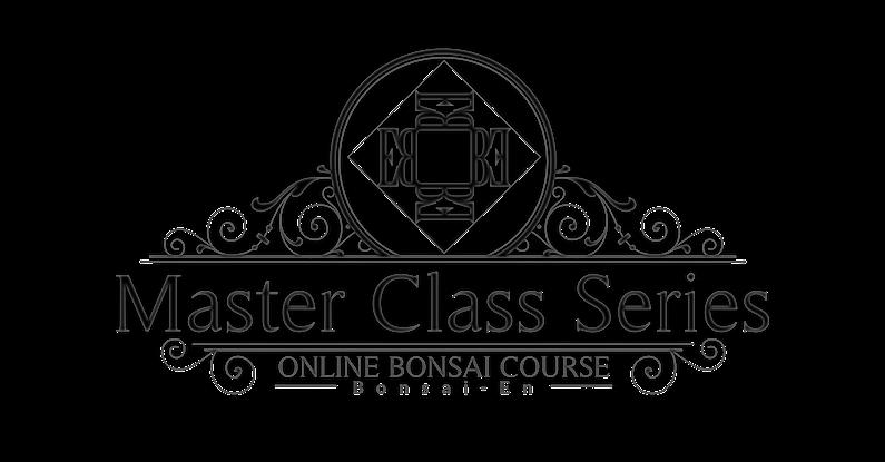 Learn Bonsai Online