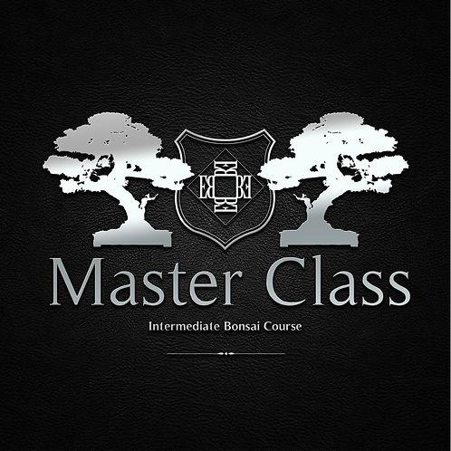 master class product logo.jpg