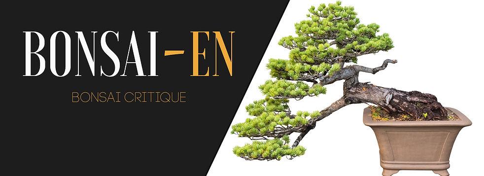 Bonsai Critique Banner.jpg