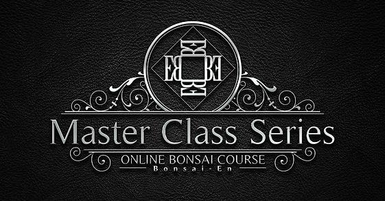 master class cover photo.jpg