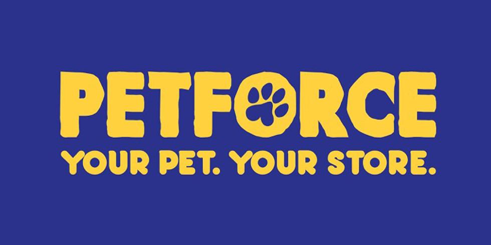 PetForce Cat Adoption Day