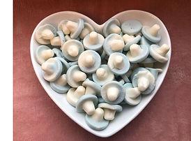 bubblegum mushrooms jpeg tiny png.jpg