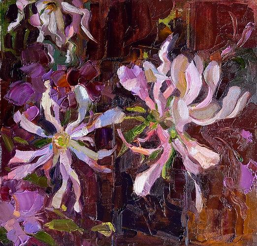 Star magnolia and azaleas