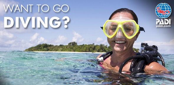 PADI Open Water Dive Course Learn Diving Scuba Azores Ponta Delgada