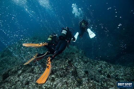 Scuba Diving Azores Dive Tauchen Plongée Buceo Mergulho Ponta Delgada