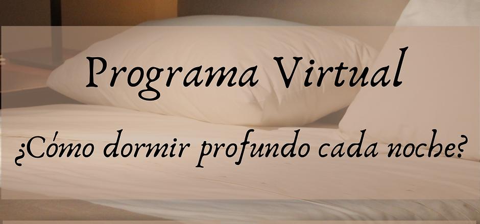 Programa Virtual (2).png