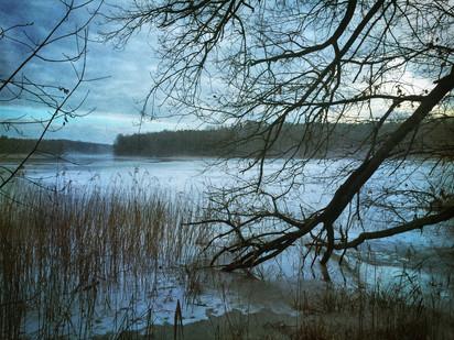 Seeufer(Winter)
