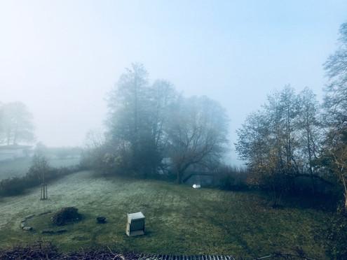 Nebel mood
