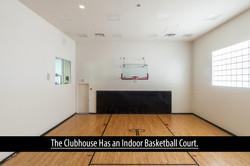 23 basketball