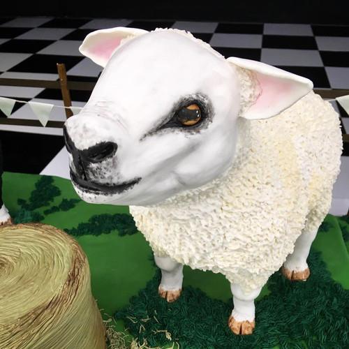 3D Sheep Cake