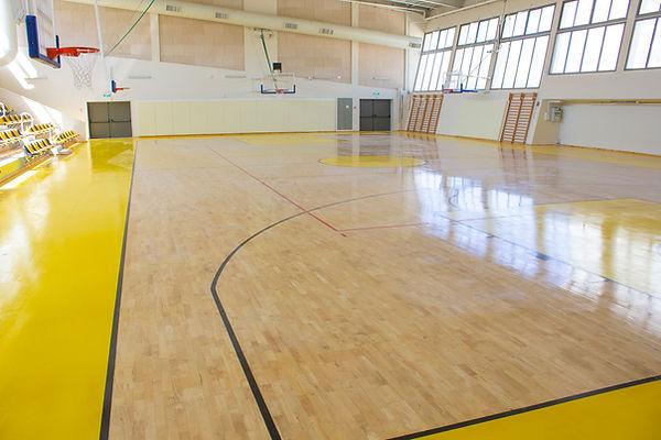 סל לכדורסל, אולם ספורט דוידי נתניה