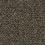 4204FR Santos brown.jpg