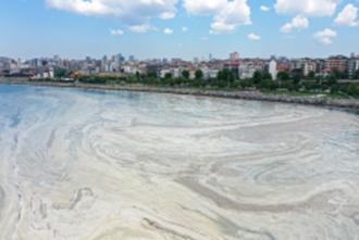 Grey Blanket of the Marmara