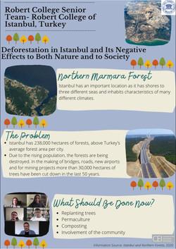 1. DeforestIstanbul