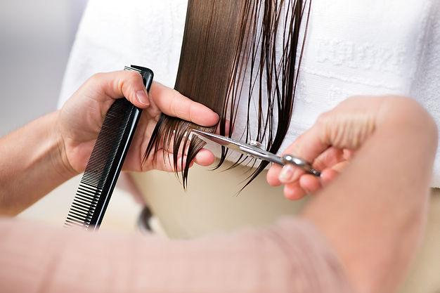Professional hairstylist cutting hair en