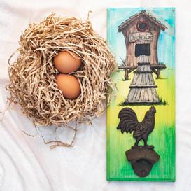 2) Chicken Coop