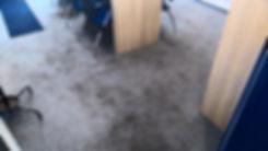 czyszczenie wykładziny biurowej, pralnia dywanów Bydgoszcz