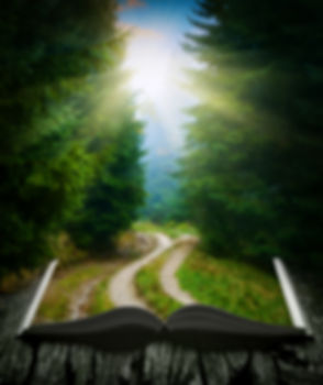 book leading to forest.jpeg