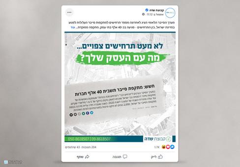עיצוב פוסט פייסבוק לפי שפת מותג