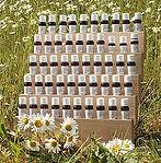 Massage effleurages aux huiles essentielles - Lunalouve