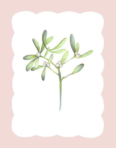 Winter Flora - Mistletoe.png