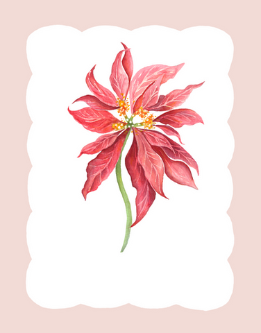 Winter Flora - Poinsettia (altered red).