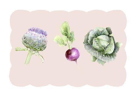 Kitchen Garden 'Trio' I (42.0cm x 29.7cm)