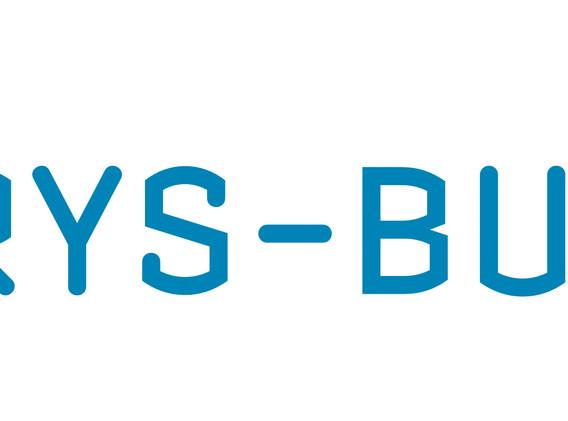 Pyrys-Bud - logo 1.jpg