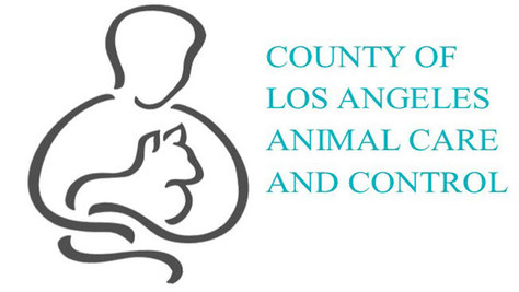 LA County Animal Control to Conduct Compliance Field Licensing Efforts in Palmdale