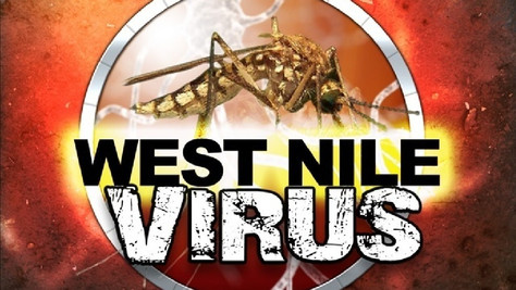 First West Nile Virus Death Reported in LA County