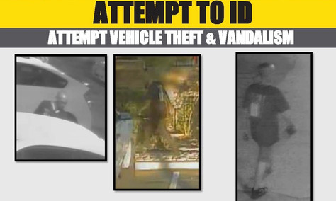 Lancaster Sheriff's needs  your help identifying a vandalism suspect.