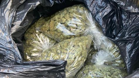Kern Sherriff's Seized 100 pounds of Marijuana.