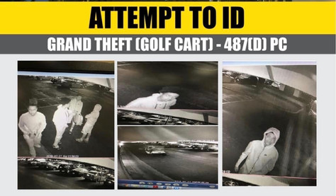 Help the Sheriff's identify and locate these juvenile grand theft suspects.