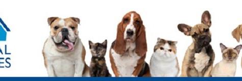 LA ANIMAL SERVICES HITS HISTORIC LIVE SAVE RATE, COMING CLOSE TO NO-KILL BENCHMARK