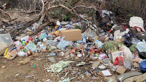Senate gives a thumbs-up to Wilk's measure to crackdown on illegal dumping