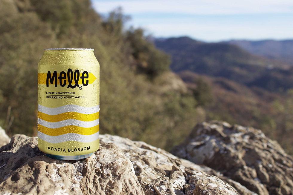 Melle-ACACIA-Nature-Beer-Can-Mockup.jpg