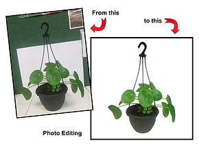 Photo Editing.jpg