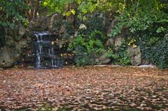 Fall Pond Liechtenstein.jpg