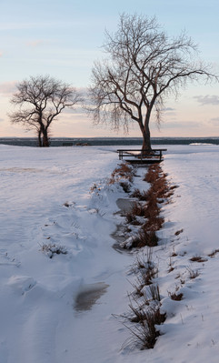 A stream to the bay.  Now a frozen memory.
