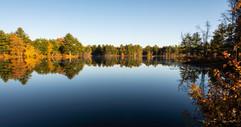 Tillinghaust Pond-510.jpg