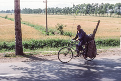Near Beijing - Man on Bicycle.