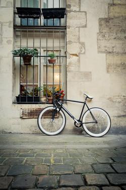 Paris Bikes-020405.jpg