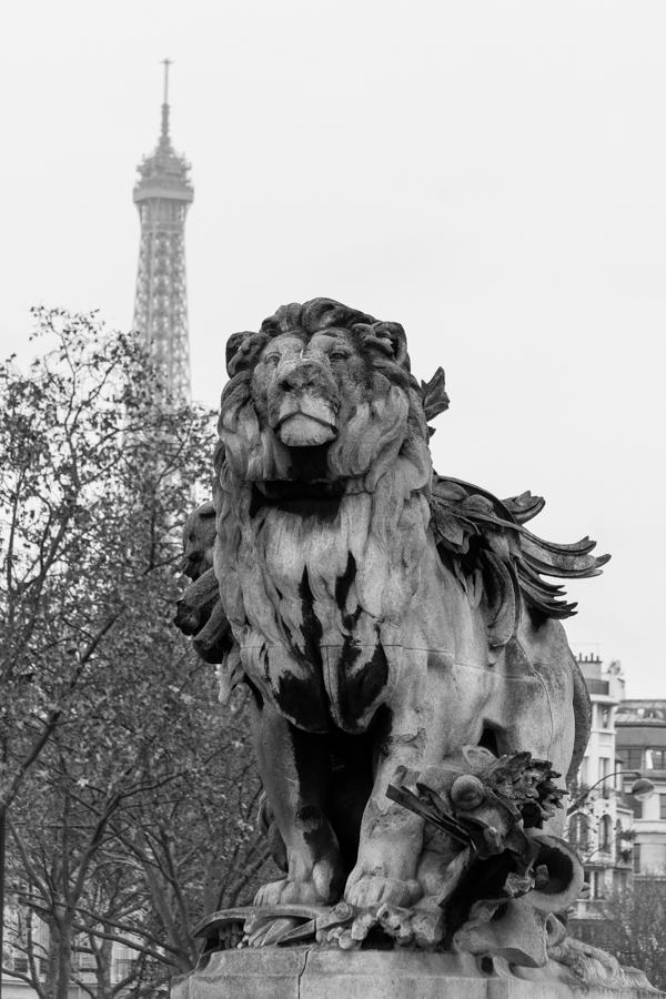 Eiffel Tower & Lion