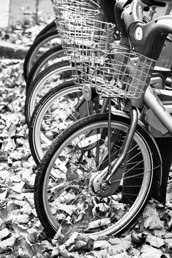 Paris Bikes-5058.jpg