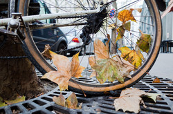 Paris Bikes-020218.jpg