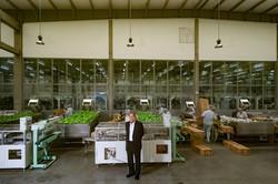 Carlos Chan - Shanghai Factory