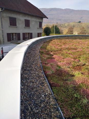 Toit terrasse végétalisation et couvertines étanchéité