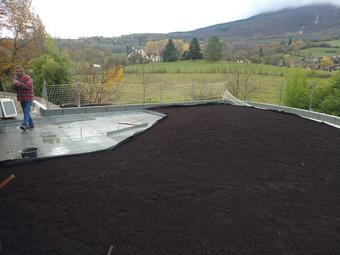 Végétalisation toit terrasse étanchéité